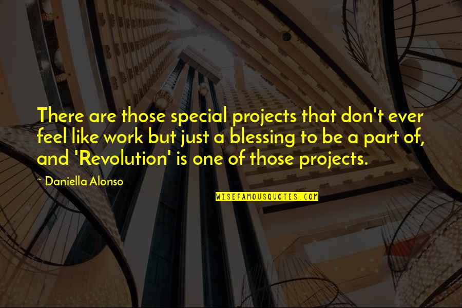 That Special One Quotes By Daniella Alonso: There are those special projects that don't ever