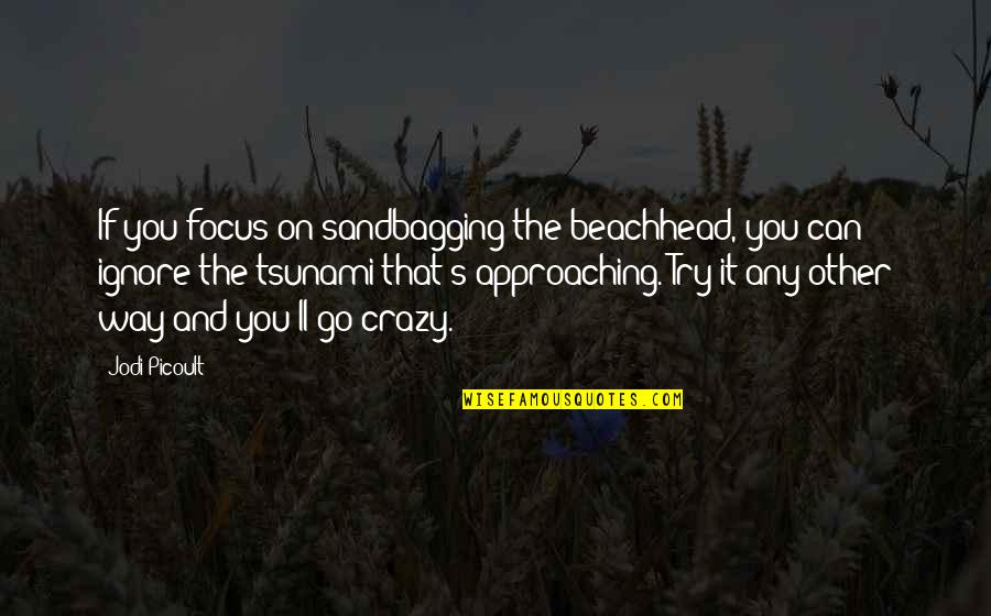 That's Crazy Quotes By Jodi Picoult: If you focus on sandbagging the beachhead, you