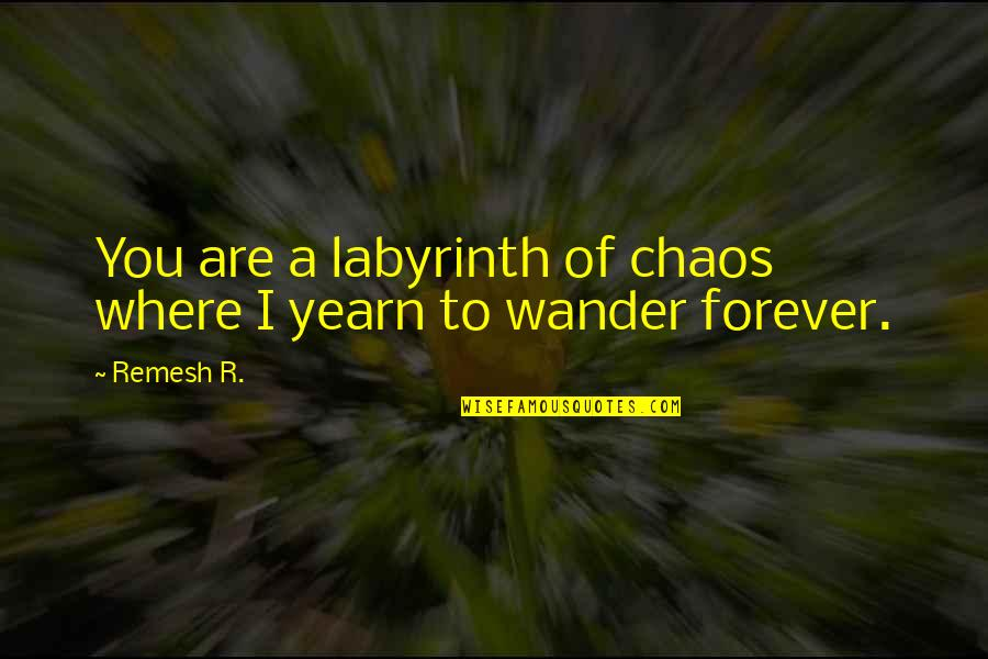 The Alchemy Of Happiness Quotes By Remesh R.: You are a labyrinth of chaos where I