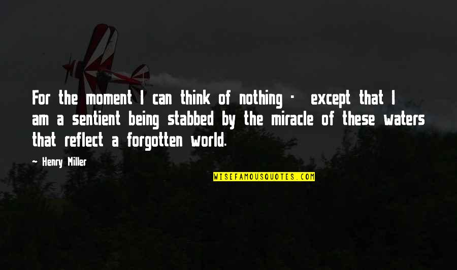 The Beautiful World Quotes By Henry Miller: For the moment I can think of nothing