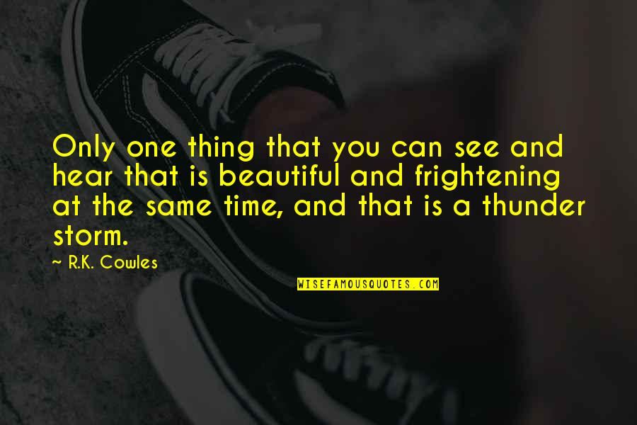 The Beautiful You Quotes By R.K. Cowles: Only one thing that you can see and