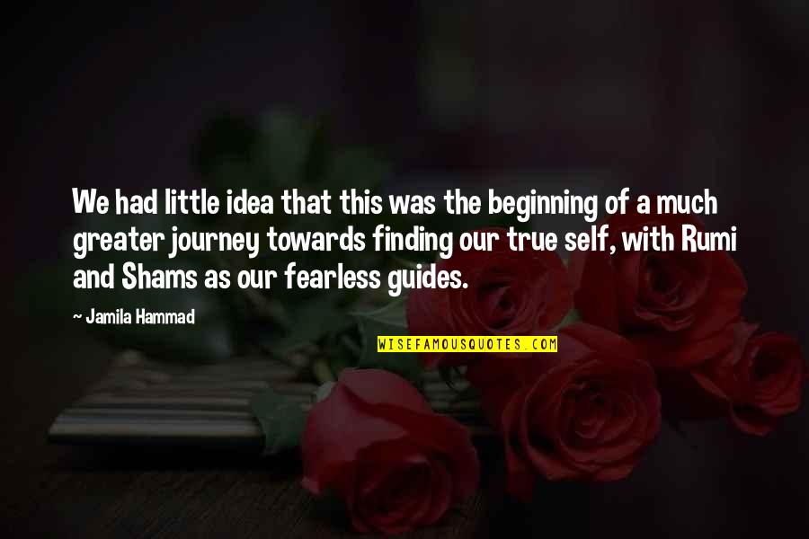 The Beginning Of A Journey Quotes By Jamila Hammad: We had little idea that this was the