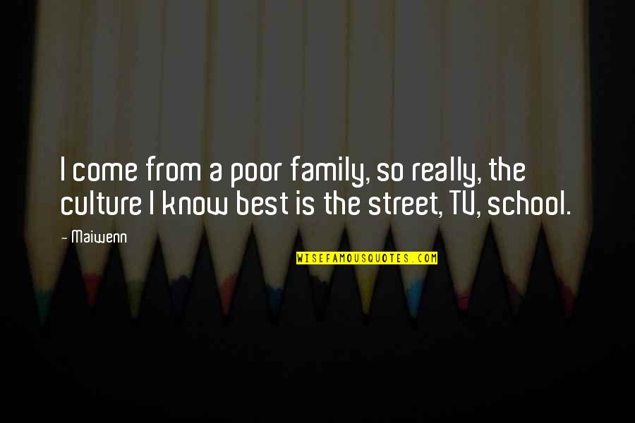 The Best Family Quotes By Maiwenn: I come from a poor family, so really,