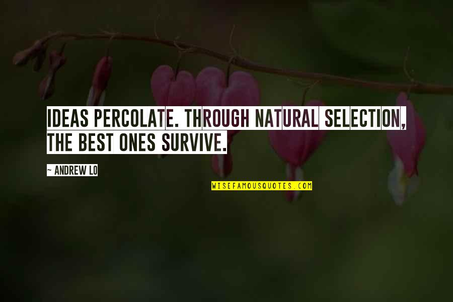The Best Ideas Quotes By Andrew Lo: Ideas percolate. Through natural selection, the best ones