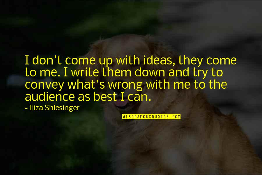 The Best Ideas Quotes By Iliza Shlesinger: I don't come up with ideas, they come