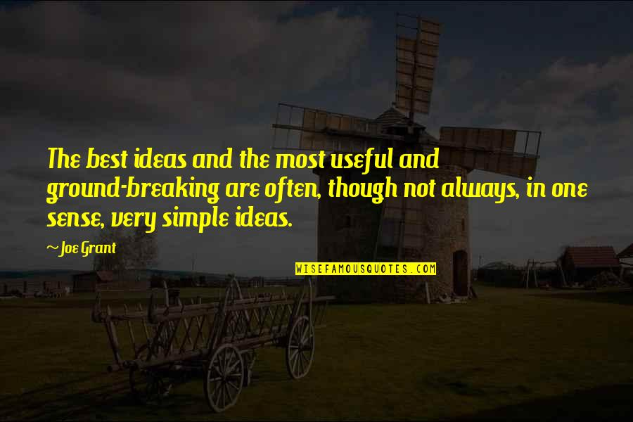The Best Ideas Quotes By Joe Grant: The best ideas and the most useful and