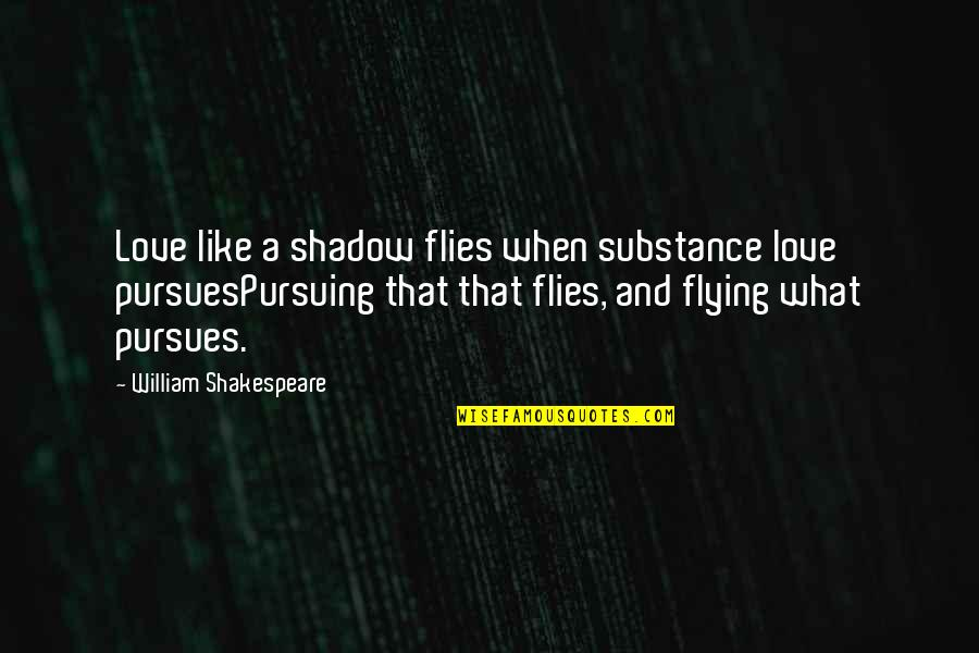 The Best Of Shakespeare Quotes By William Shakespeare: Love like a shadow flies when substance love