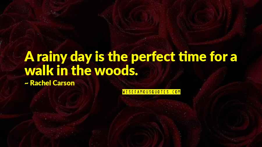 The Best Rainy Day Quotes By Rachel Carson: A rainy day is the perfect time for