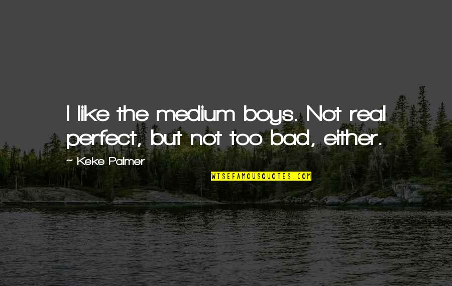 The Boy I Like Quotes By Keke Palmer: I like the medium boys. Not real perfect,