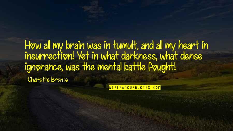 The Brain And Heart Quotes By Charlotte Bronte: How all my brain was in tumult, and