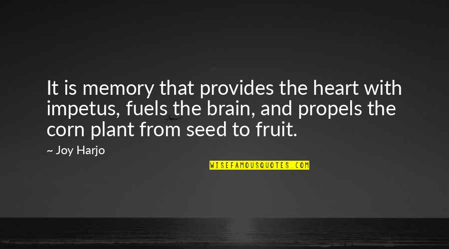 The Brain And Heart Quotes By Joy Harjo: It is memory that provides the heart with