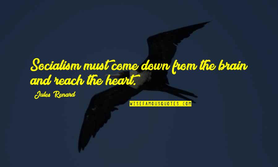 The Brain And Heart Quotes By Jules Renard: Socialism must come down from the brain and