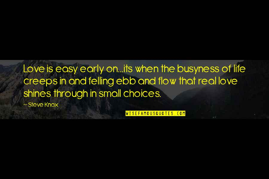 The Busyness Of Life Quotes By Steve Knox: Love is easy early on...its when the busyness