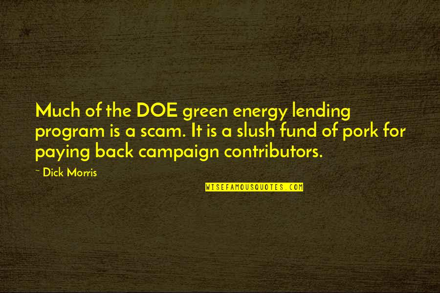 The Campaign Quotes By Dick Morris: Much of the DOE green energy lending program