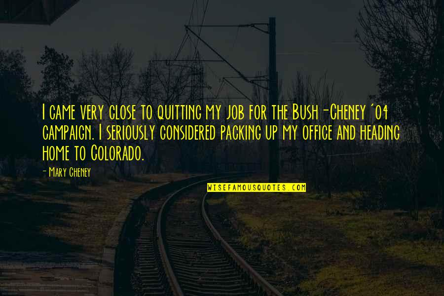 The Campaign Quotes By Mary Cheney: I came very close to quitting my job