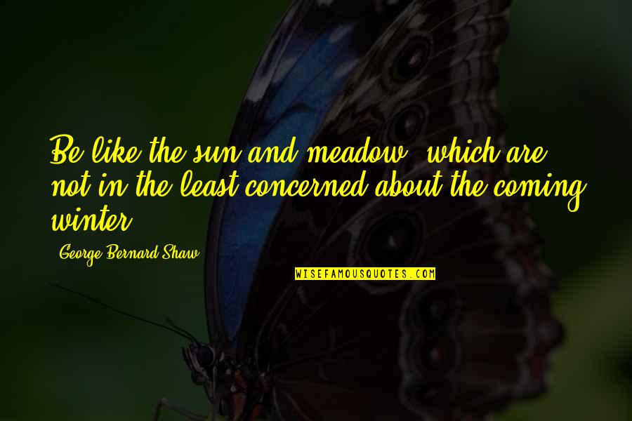 The Coming Of Winter Quotes By George Bernard Shaw: Be like the sun and meadow, which are