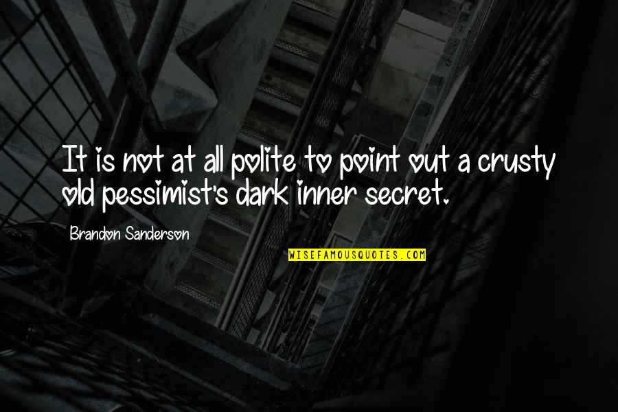 The Dark Ages Quotes By Brandon Sanderson: It is not at all polite to point