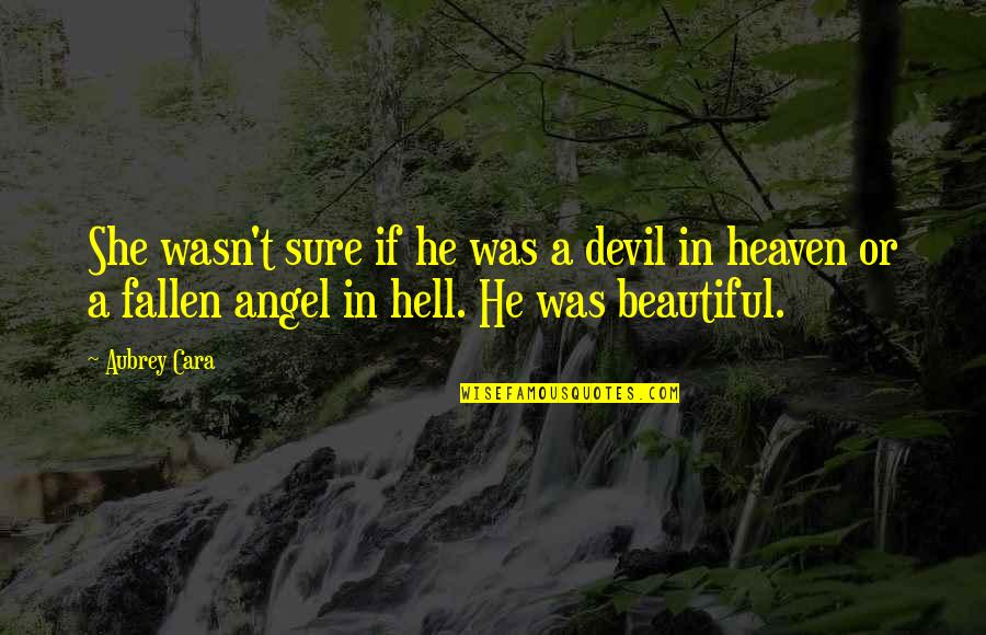 The Devil And Angel Quotes By Aubrey Cara: She wasn't sure if he was a devil