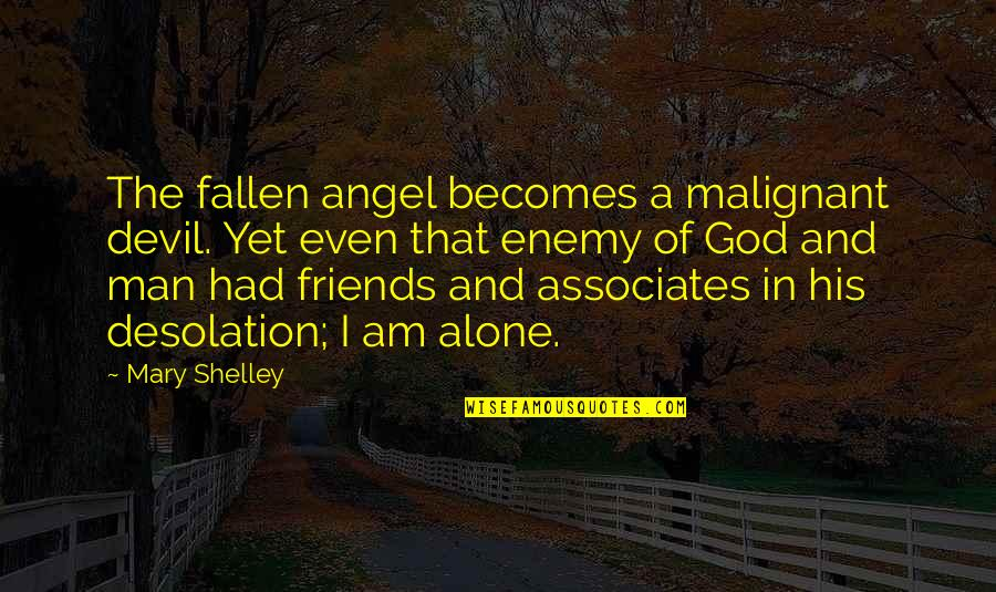 The Devil And Angel Quotes By Mary Shelley: The fallen angel becomes a malignant devil. Yet