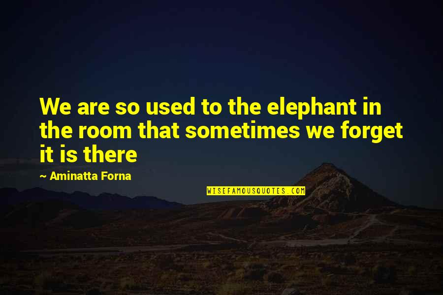 The Elephant In The Room Quotes By Aminatta Forna: We are so used to the elephant in