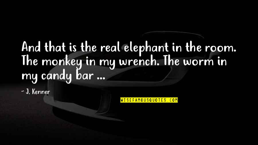 The Elephant In The Room Quotes By J. Kenner: And that is the real elephant in the