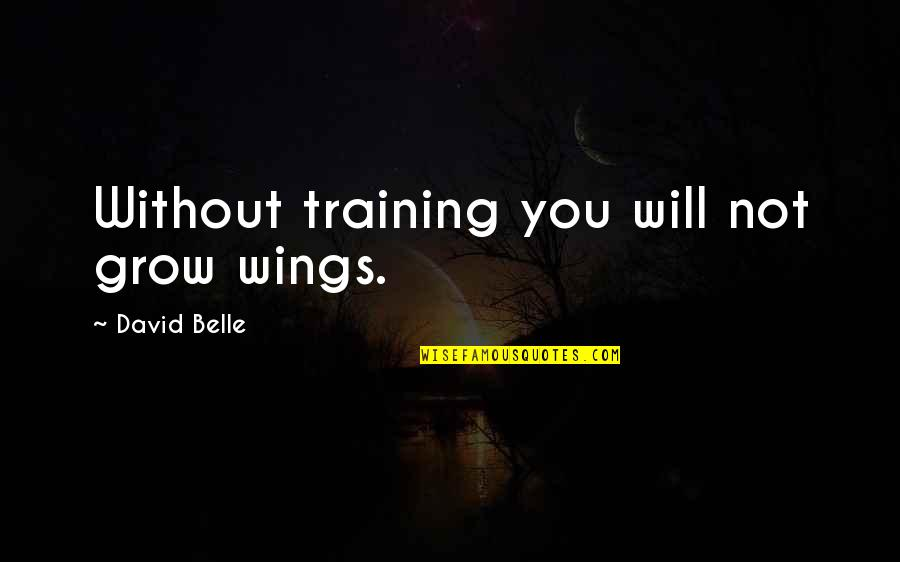 The End Of Vacation Quotes By David Belle: Without training you will not grow wings.