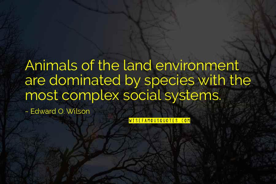 The Environment And Animals Quotes By Edward O. Wilson: Animals of the land environment are dominated by