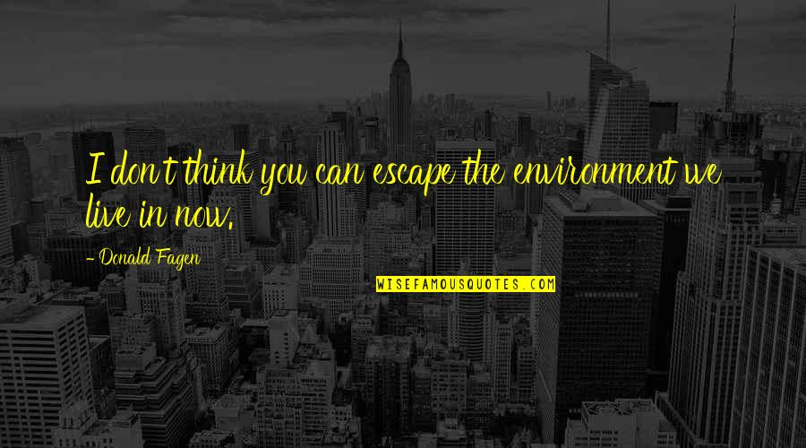 The Environment You Live In Quotes By Donald Fagen: I don't think you can escape the environment
