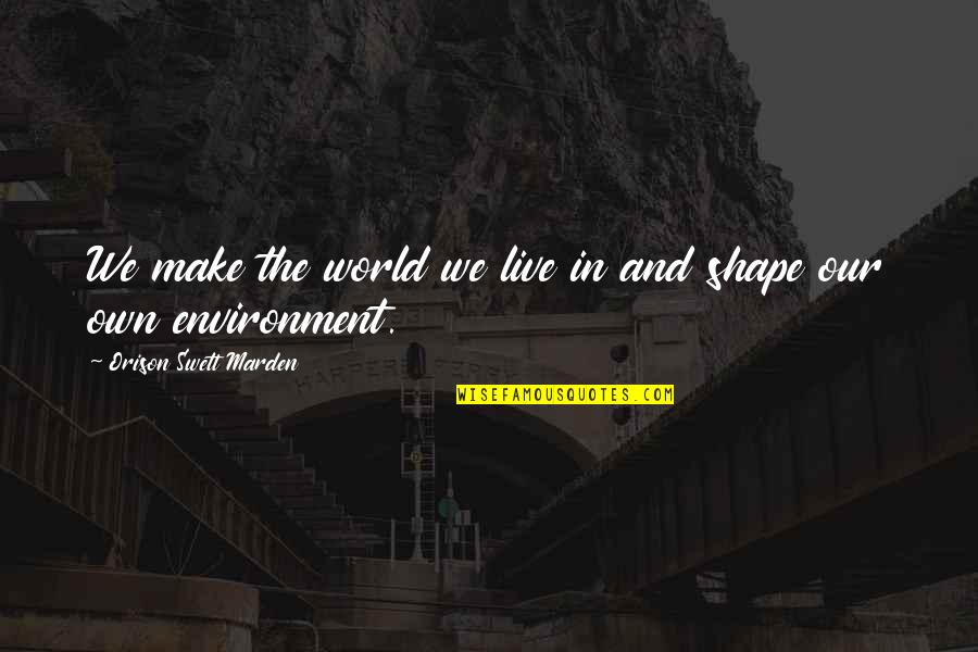 The Environment You Live In Quotes By Orison Swett Marden: We make the world we live in and