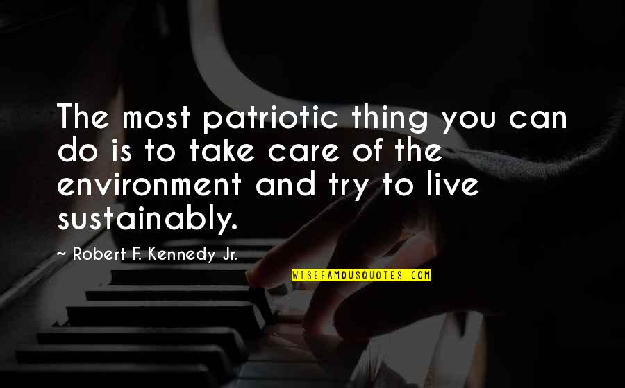 The Environment You Live In Quotes By Robert F. Kennedy Jr.: The most patriotic thing you can do is