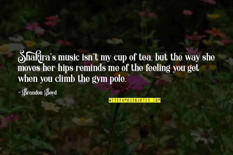 The Feeling Of Music Quotes By Brandon Boyd: Shakira's music isn't my cup of tea, but