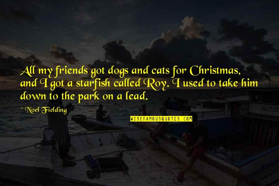 The Friends Quotes By Noel Fielding: All my friends got dogs and cats for