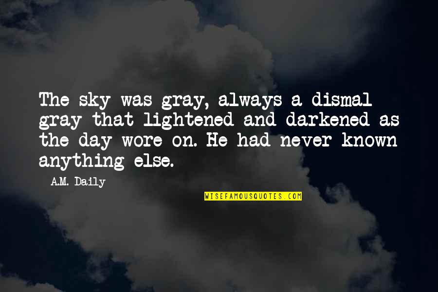 The Gray Sky Quotes By A.M. Daily: The sky was gray, always a dismal gray
