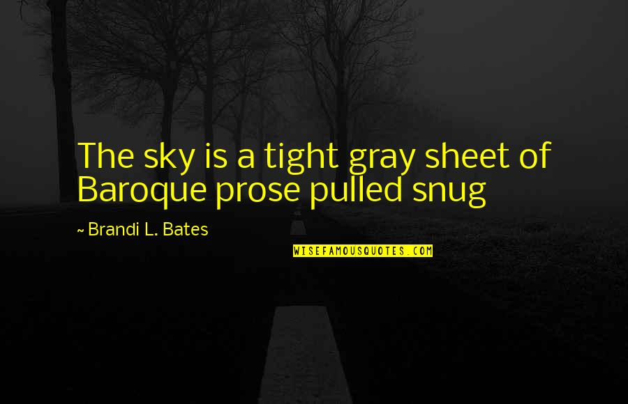 The Gray Sky Quotes By Brandi L. Bates: The sky is a tight gray sheet of