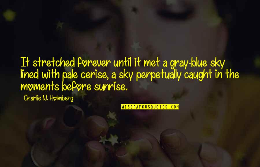 The Gray Sky Quotes By Charlie N. Holmberg: It stretched forever until it met a gray-blue
