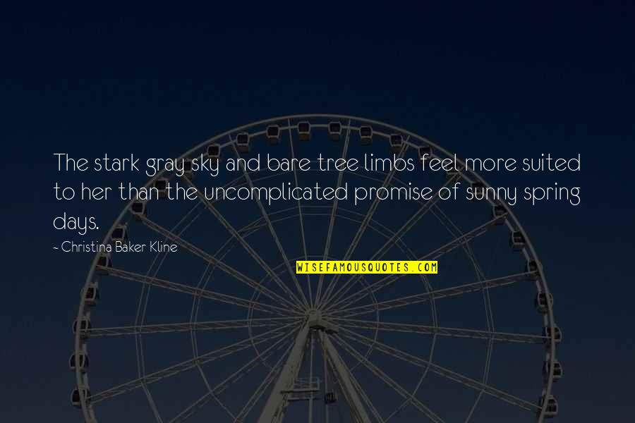 The Gray Sky Quotes By Christina Baker Kline: The stark gray sky and bare tree limbs