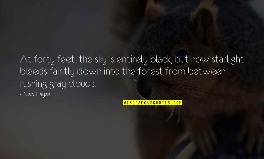 The Gray Sky Quotes By Ned Hayes: At forty feet, the sky is entirely black,