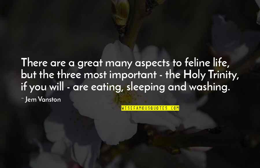 The Holy Trinity Quotes By Jem Vanston: There are a great many aspects to feline