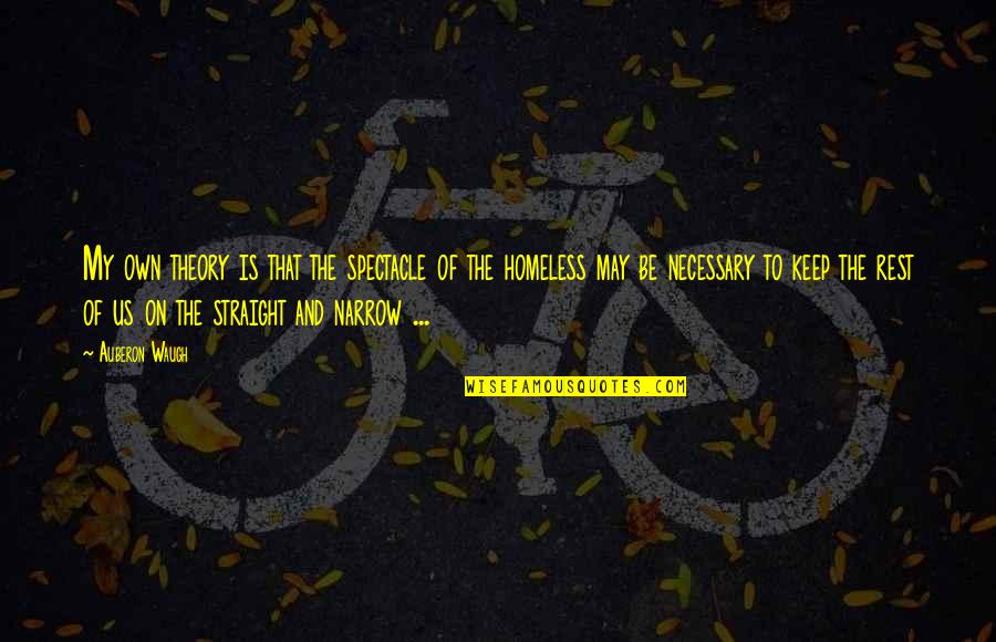 The Homeless Quotes By Auberon Waugh: My own theory is that the spectacle of