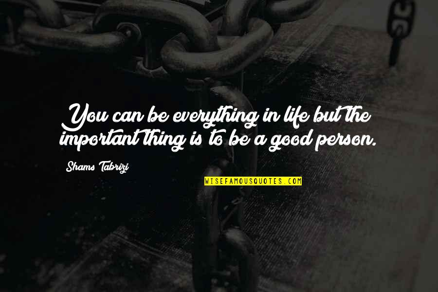 The Importance Of Money Quotes By Shams Tabrizi: You can be everything in life but the