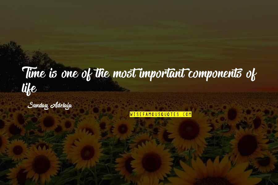 The Importance Of Money Quotes By Sunday Adelaja: Time is one of the most important components
