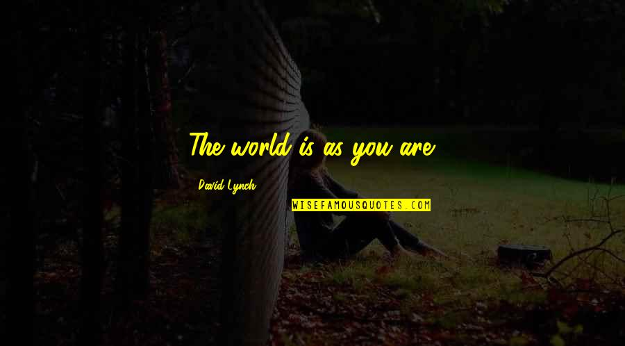 The Law Of Attraction Quotes By David Lynch: The world is as you are.