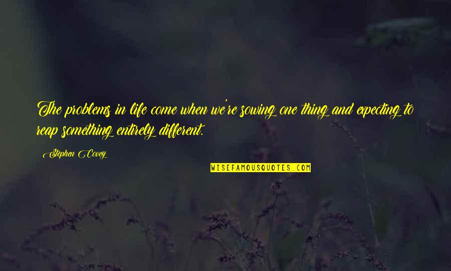 The Law Of Attraction Quotes By Stephen Covey: The problems in life come when we're sowing