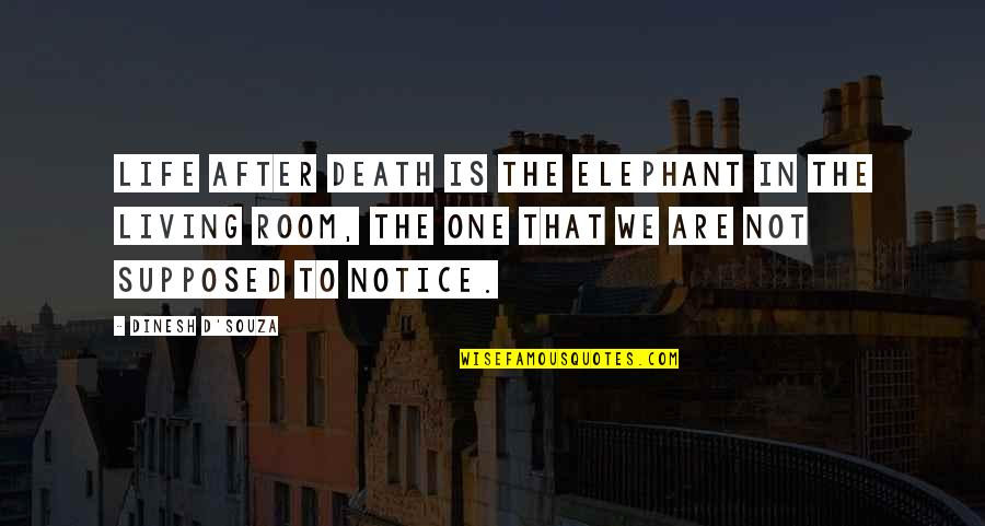 The Life After Death Quotes By Dinesh D'Souza: Life after death is the elephant in the