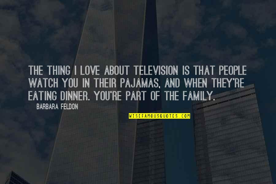 The Love Of Family Quotes By Barbara Feldon: The thing I love about television is that