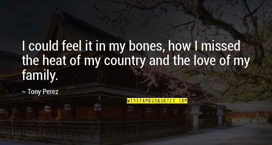 The Love Of Family Quotes By Tony Perez: I could feel it in my bones, how