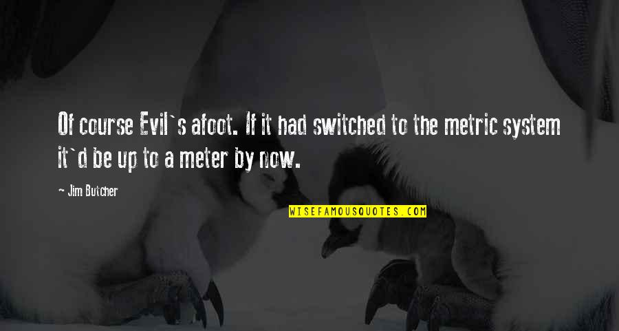 The Metric System Quotes By Jim Butcher: Of course Evil's afoot. If it had switched