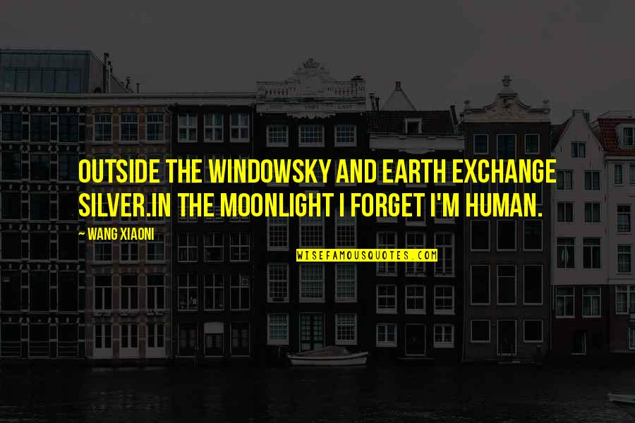 The Moon And Sky Quotes By Wang Xiaoni: Outside the windowSky and earth exchange silver.In the