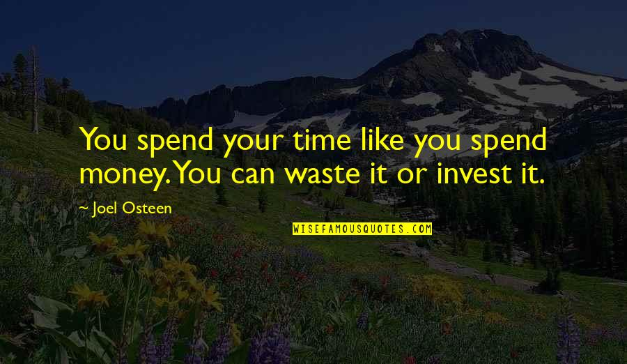 The More You Invest Quotes By Joel Osteen: You spend your time like you spend money.