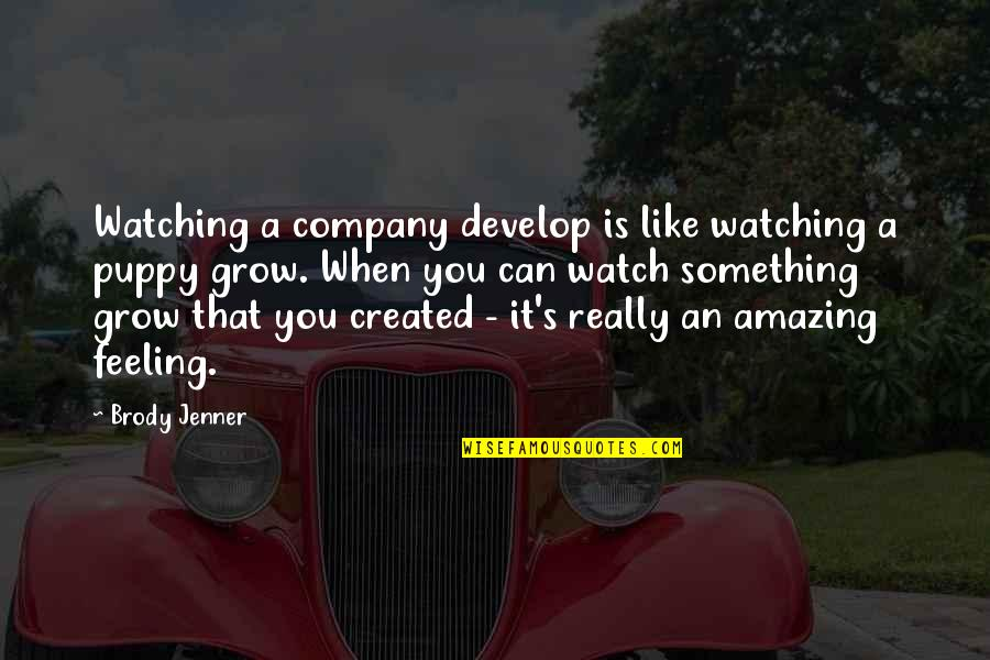 The Most Amazing Feeling Quotes By Brody Jenner: Watching a company develop is like watching a